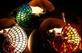 Nautilus Lamps and  Nautilus Shells